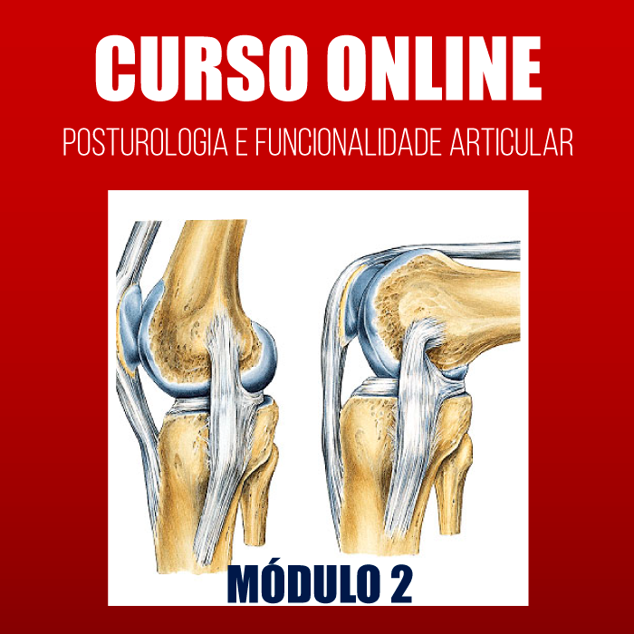 CURSO-ONLINE-MODULO-2